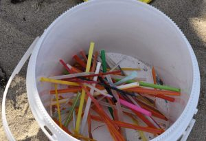 Surfrider MA Testifies in Support of Single-Use Plastic Reduction